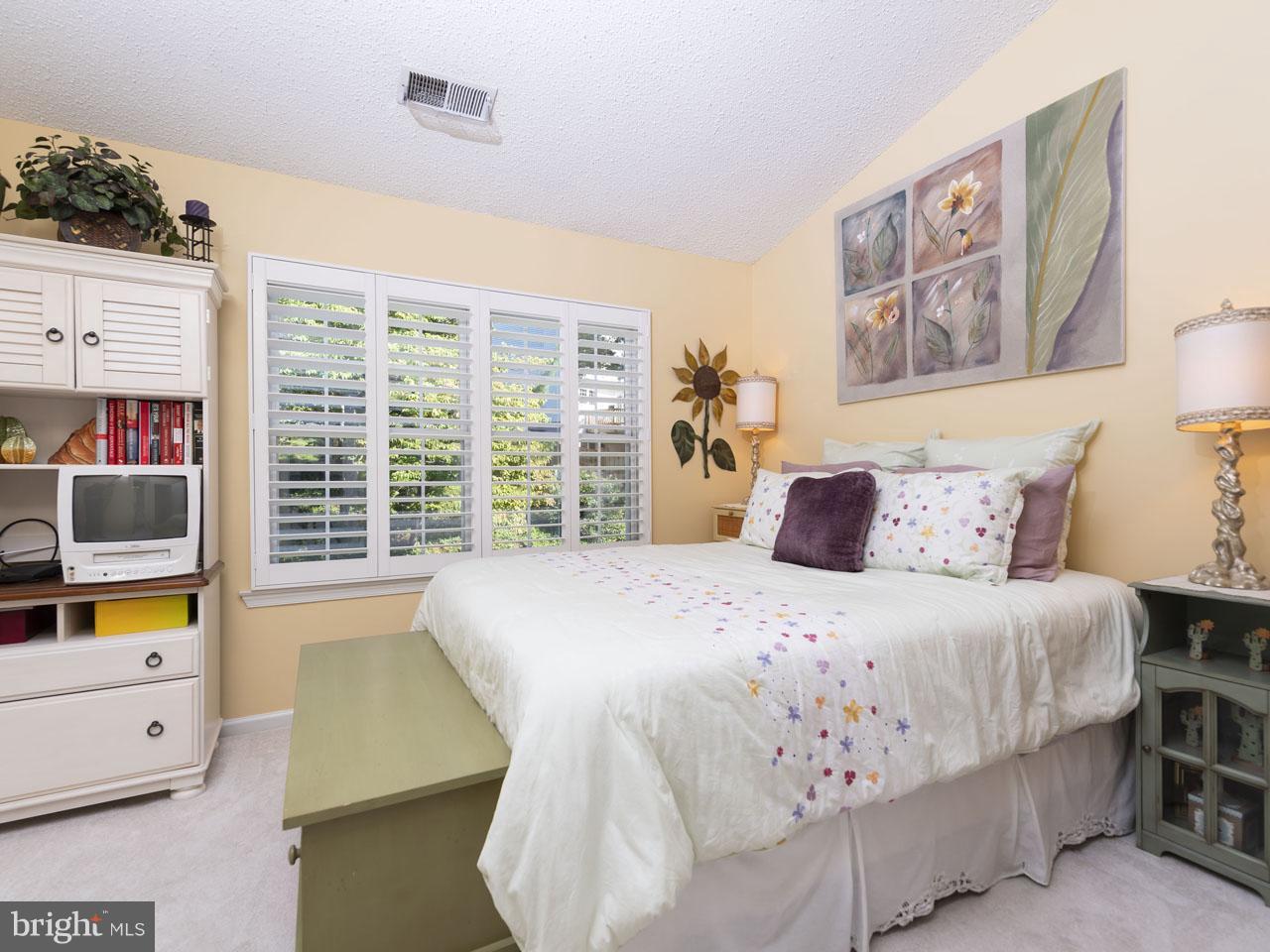 1002640508-300537941392-2021-07-22-05-00-37     Pinecrest   Alexandria Delaware Real Estate For Sale   MLS# 1002640508  - Best of Northern Virginia