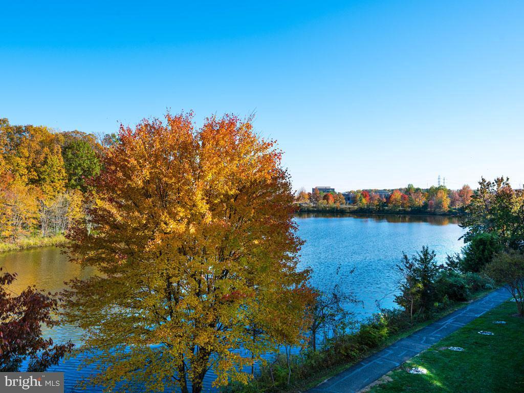 VAFX1166940-304394186863-2021-07-16-19-45-17        Alexandria Delaware Real Estate For Sale   MLS# Vafx1166940  - Best of Northern Virginia