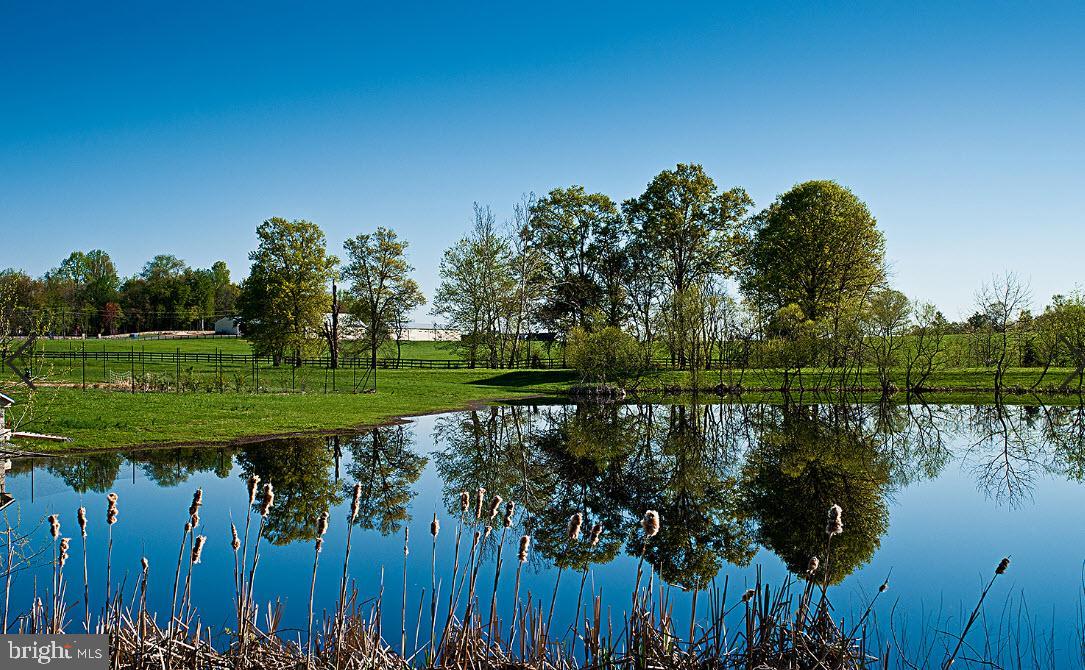 VALO439652-304624267242-2021-07-14-20-32-20        Upperville Delaware Real Estate For Sale   MLS# Valo439652  - Best of Northern Virginia